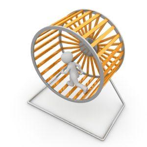 hamster-wheel-1014036_640
