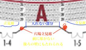 宝塚大劇場立ち見席穴場位置